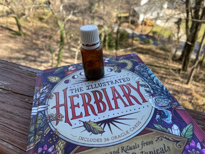 How Essential Oils Changed My Life