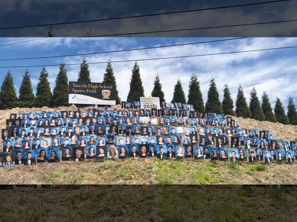 Graduate photos cover the hill outside Tuscola High School. Graduation ceremonies took unrecognizable forms in 2020. File photo