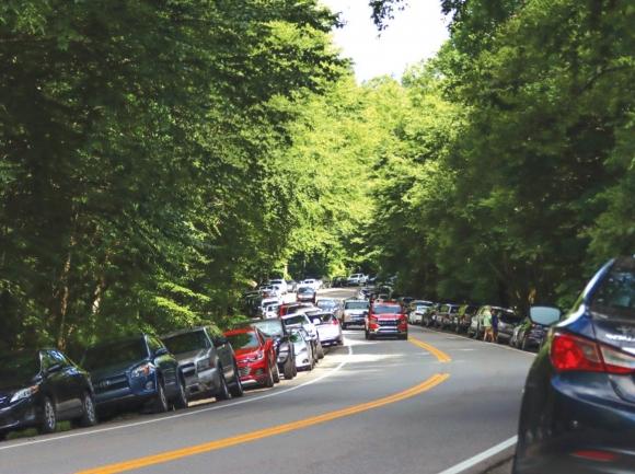 Alum Cave Trail overflow parking.