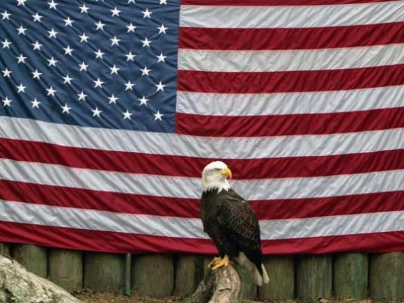 Politics may fail us, but our ideals endure