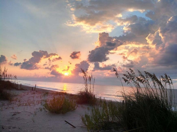 There's magic in these evening Edisto walks