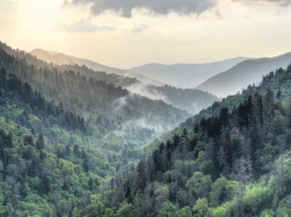 Great Smoky Mountains National Park. Courtesy Jackson County TDA