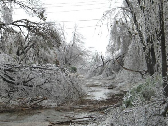 This must be the place: 'North Country Ice Storm of '98'