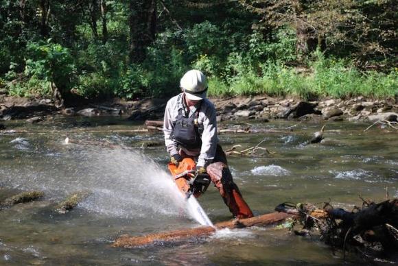 Nantahala District River Ranger Nathan Dewhurst removes debris from the Nantahala River. Forest Service photo