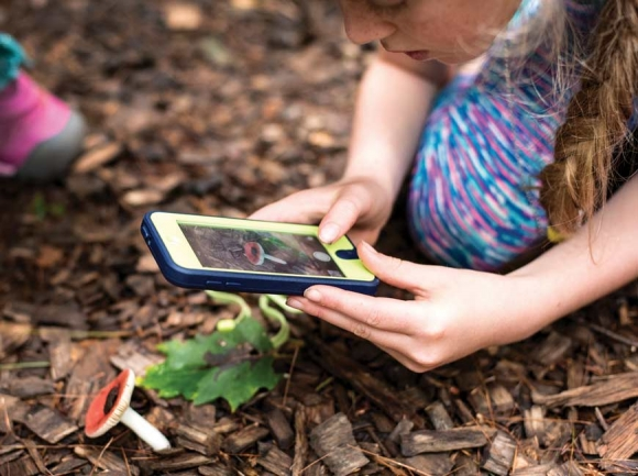 An ecoEXPLORE participant captures her observation of a mushroom. N.C. Arboretum photo