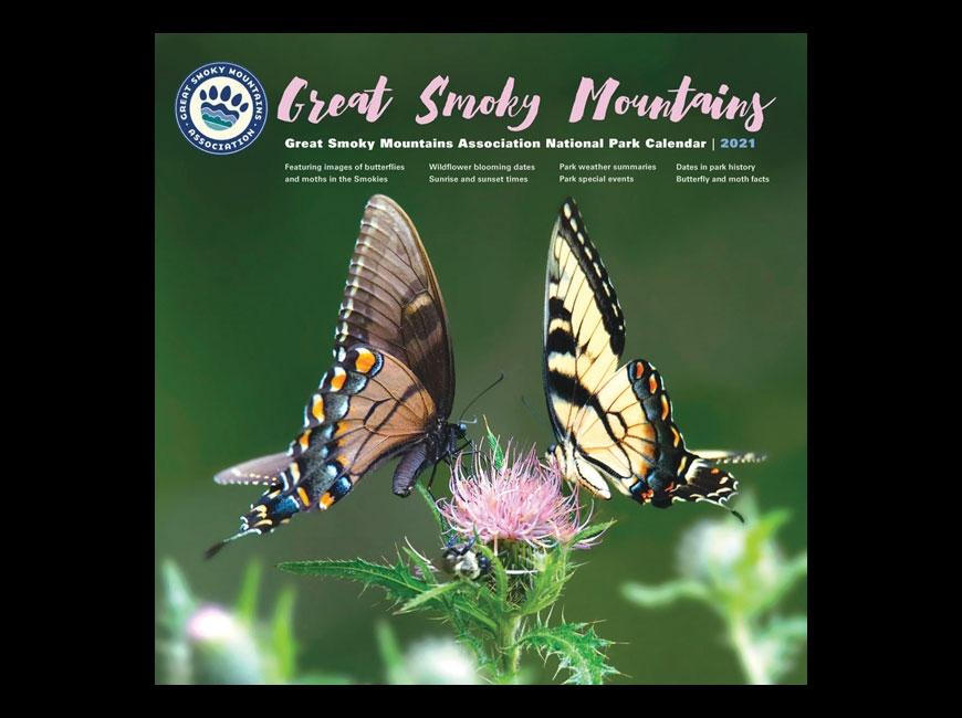GSMA releases butterfly-centric 2021 calendar