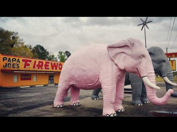Roadside in South Carolina. Garret K. Woodward photo