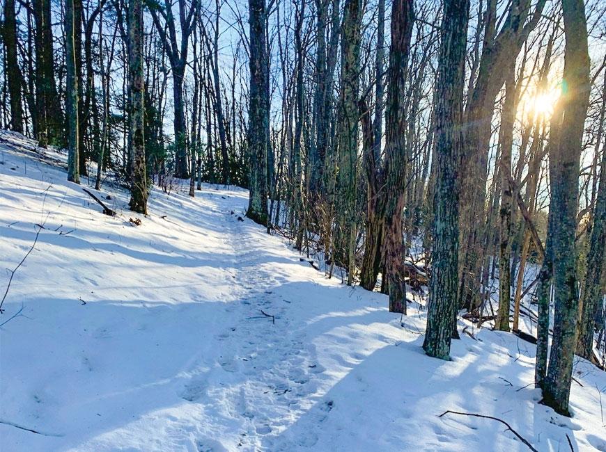 Cataloochee Divide Trail.