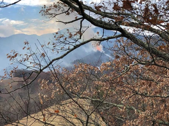 Flames rise from Cold Mountain. USFS photo