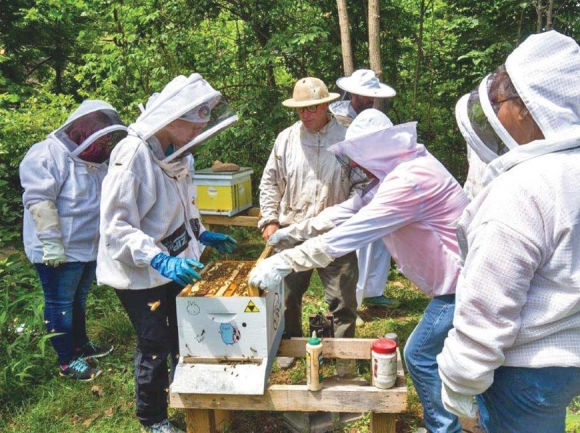 Youth learn life lessons from bees
