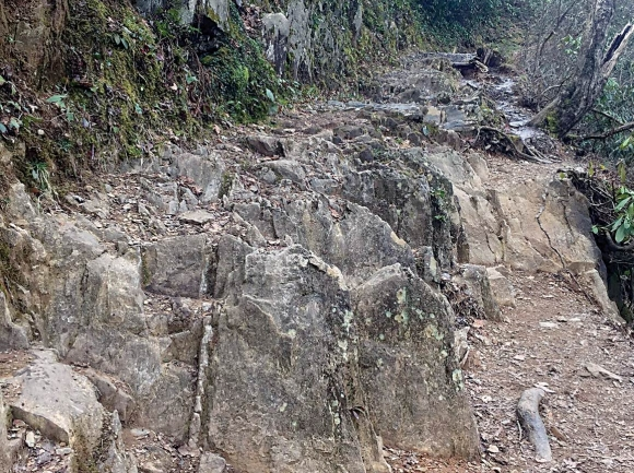 Severe erosion on the trail currently presents issues for trail safety and sustainability. NPS photo