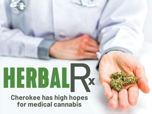 Cherokee establishes medical cannabis program