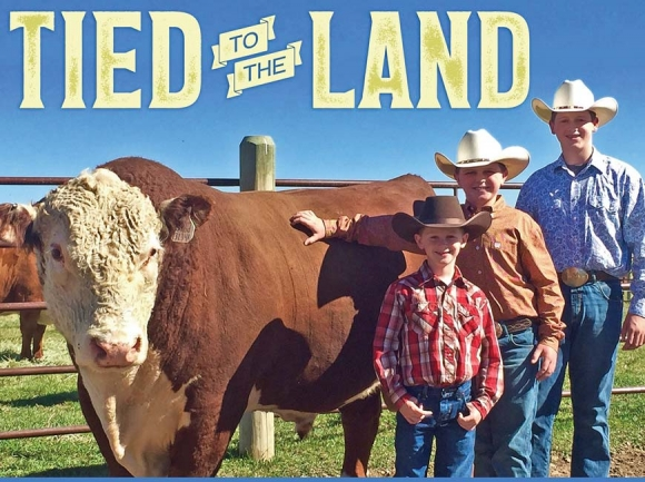 Brothers Parker (from left), Walker and Tucker stand with one of the seed stock cattle bred at Guy Brothers Farms. Guy Brothers Farms photo