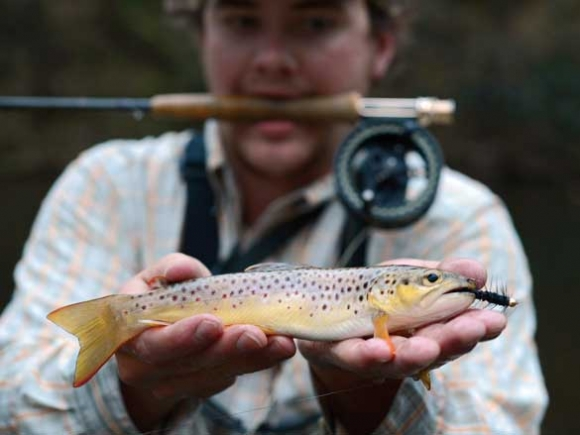 Anticipated Trout Capital designation likely to spur fly fishing tourism