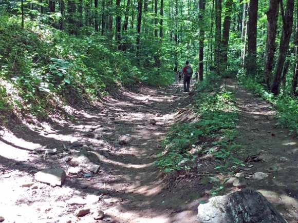 Pursuing the Pinnacle: Mountain bikers push to create new trail system in Sylva
