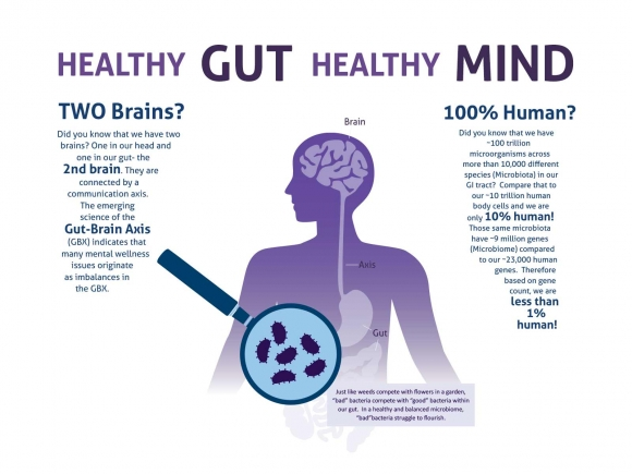 Best and Worst Foods For Your Gut