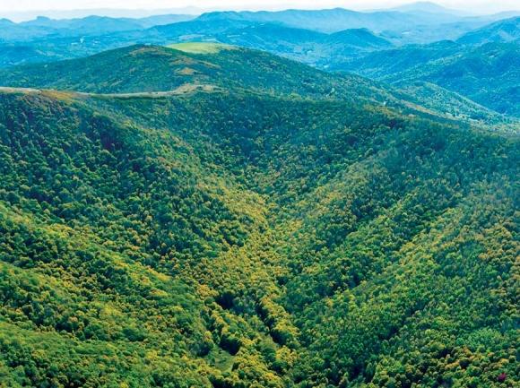 More land conserved at Highlands of Roan