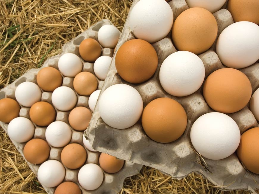 Sponsored: Are brown eggs healthier?