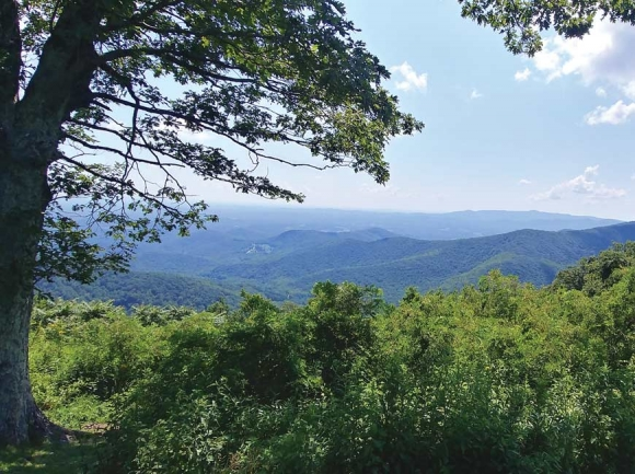 Blue Ridge Parkway, Virginia.