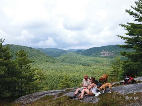 Hiking trails of the North Carolina Smokies