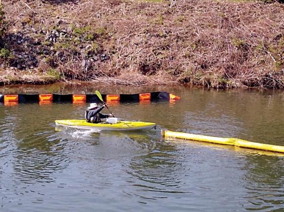 TVA grant to reduce Lake Junaluska litter